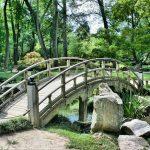 דסמנית - קידום עסקים בגוגל כמו גשר שעוזר לך להגיע למרות ההפרעות